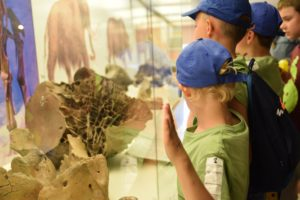 Paleontologia na wesoło