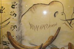 1_Część-wystawy-Mamuty-Nosorożce._
